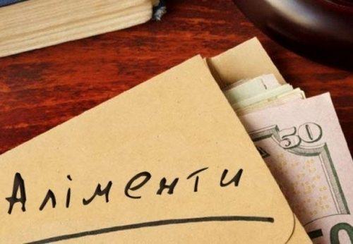 На Житомирщині вже є перші працевлаштовані боржники-аліментники