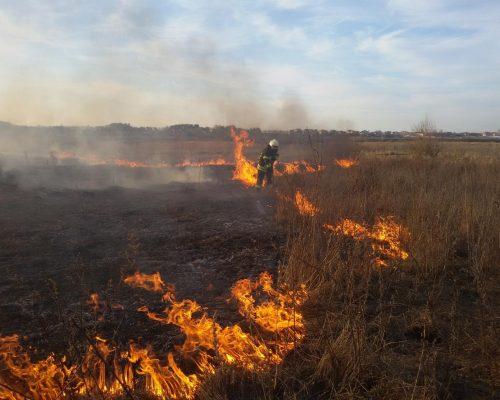 Спалювати суху траву небезпечно!