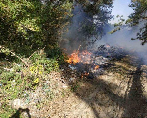 Рятувальники Житомирщини закликають громадян не випалювати суху траву